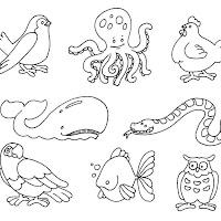 12  ANIMALES.jpg