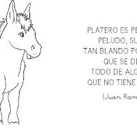 poesia.jpg