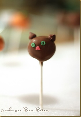 kittypop