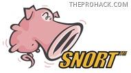 Snort - open source IDS - theprohack.com