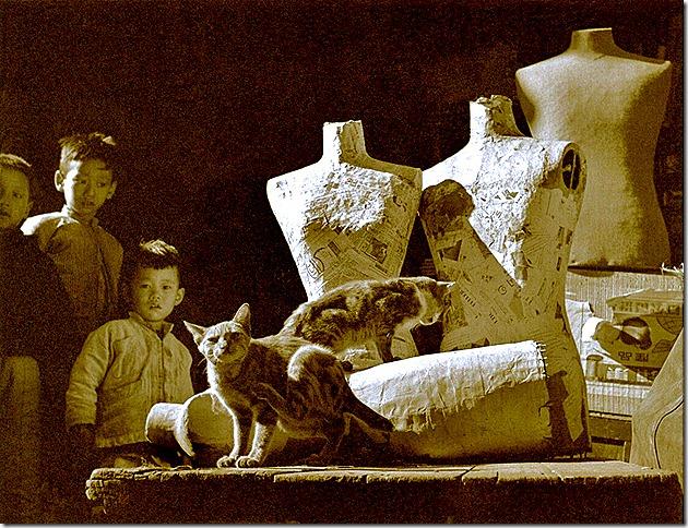 Fan Ho_Kids and Cats, 1961