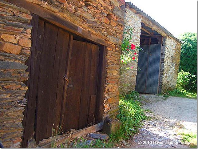 GALICIA_Freituxe (Lugo) 114 (24)