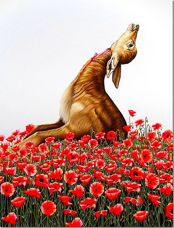 Emily Roz. Gazelle with Poppies, 2008. Colored pencil on paper, 22 x 30.