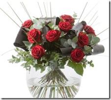 crocus roses