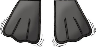 48 - TP Snorkle Flippers[1].JPG