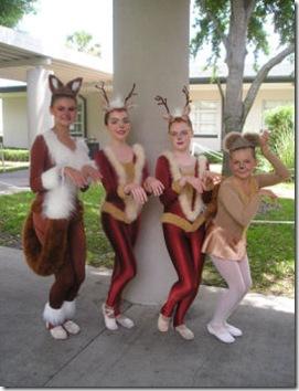 deers, fox squirel