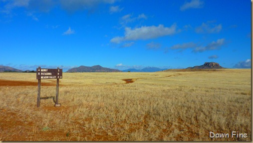 San Rafael Grasslands_004