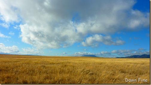 San Rafael Grasslands_008