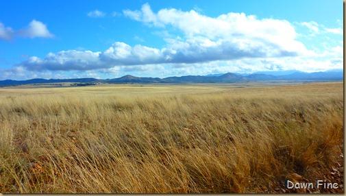 San Rafael Grasslands_011