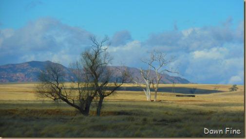 San Rafael Grasslands_017