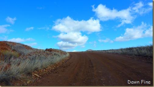 San Rafael Grasslands_019