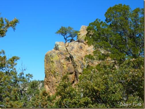 Lost Mine Trail_027