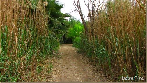 las palamas trail_049