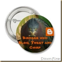 birders_who_blog_tweet_and_chirp_button-p145664733167229518tmn2_210