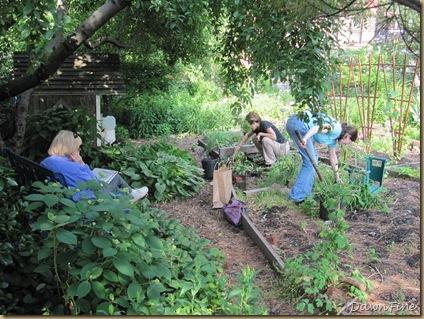 sams garden_20090528_007