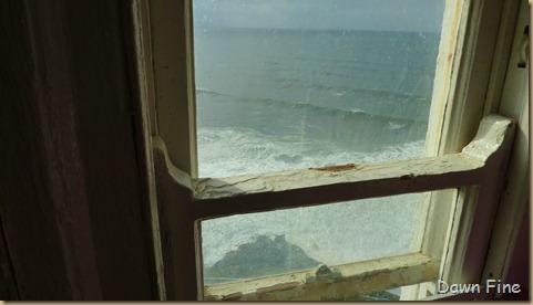 oregon coast drive_029