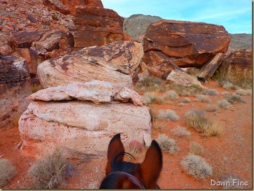 horseback riding with merrilee_002