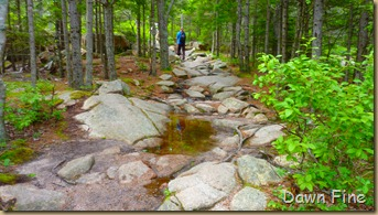 Gorham mt hike_012