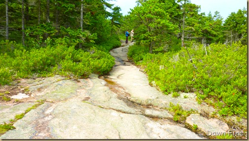 Gorham mt hike_016