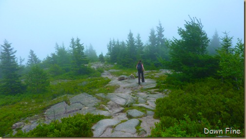 Gorham mt hike_135