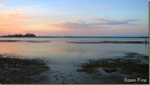 Hutchinson Island_208