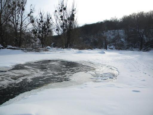 Буки, вигляд взимку, прогулянка річкою