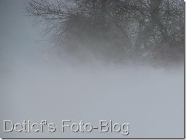 winter2010_02