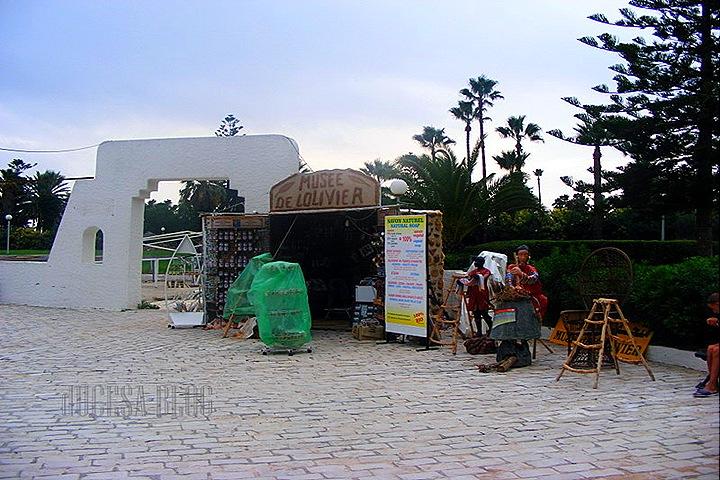 TUNISIA 2009 062