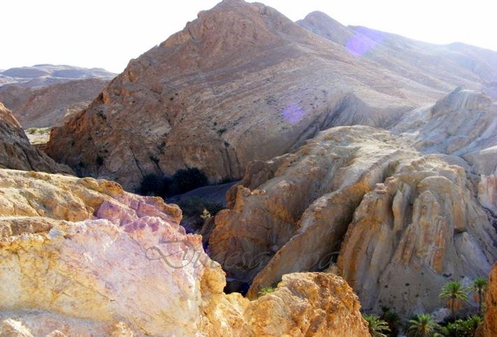 TUNISIA 2009 448