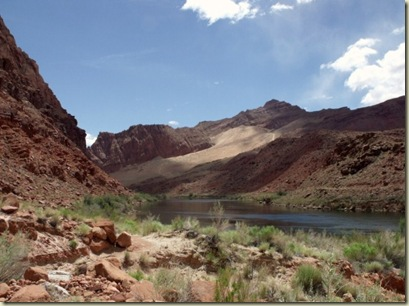 05 Colorado River upstream from historic Lee's Ferry crossing AZ (800x600)