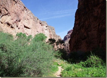 02 Trail downstream from Mooney Falls Havasupai Indian Reservation AZ (1024x746)
