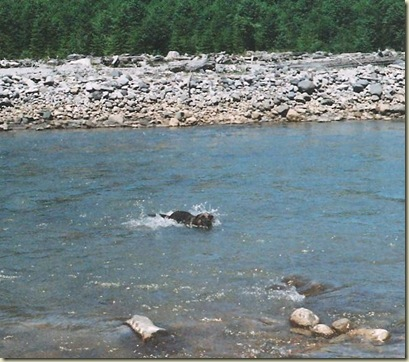 02 Carson in the Muddy River Gifford Pinchot NF WA Summer 1998 (651x575)