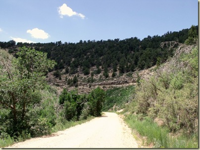 05 FR 425 through canyon Kaibab NR AZ