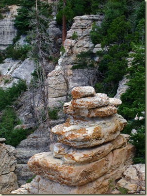 09 Limestone stratigraphy from rock outcrop off Transept trail NR GRCA NP AZ (768x1024)