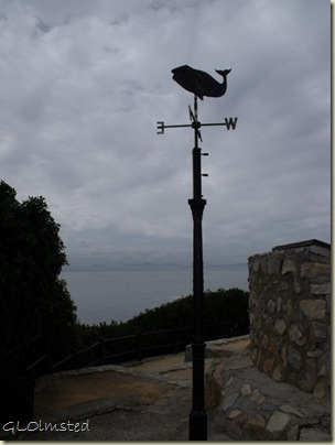 08 Whale weather vane Whale Museum Hermanus Western Cape ZA (768x1024)