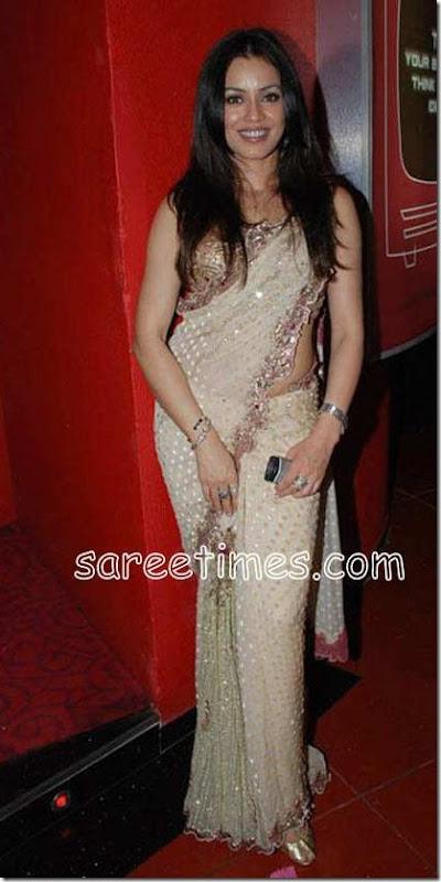 Mahima-chaudhary-Embroidery-Saree