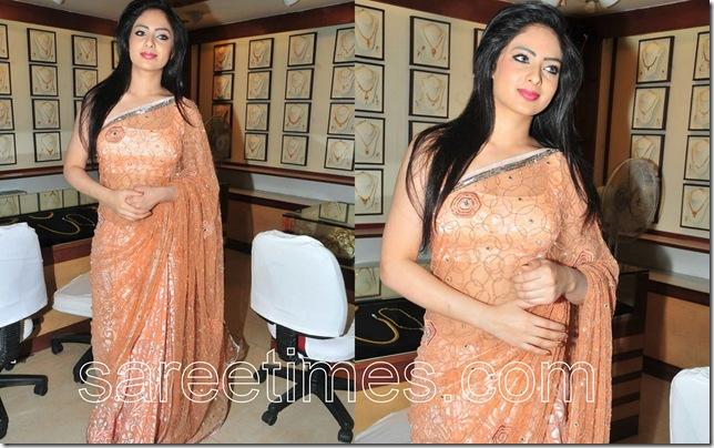 Nikeesha-Patel-Deisgner-Sari