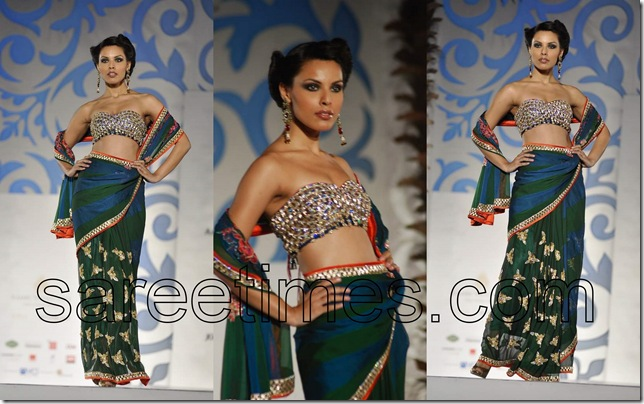 Nisha-Sagar-Sari -Blouse-Designs