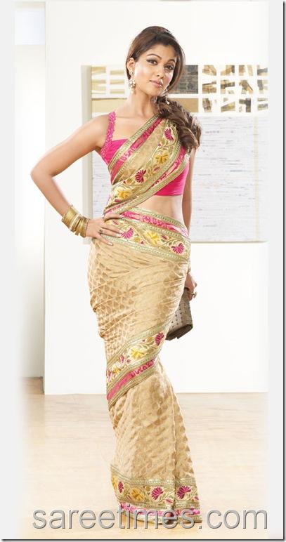 Nayantara-Designer-Sari-Pothys-Saree-AD (2)