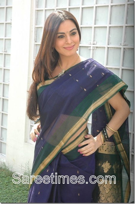 Shraddha-Arya-Blue-Saree