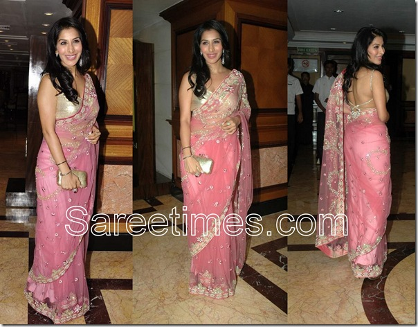 Sophie_Chaudhary_Pink_Embroidery_Saree