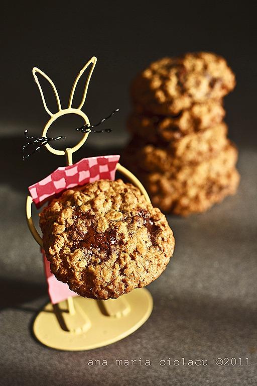 [20Oatmeal chocolate cookies[6].jpg]