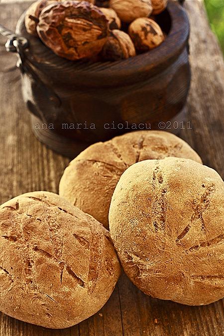 3Paine cu nuci si ierburi aromatice watermark