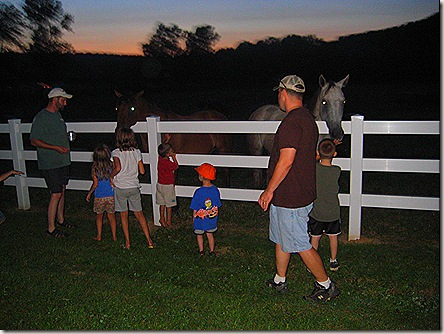 The kids petting the horses