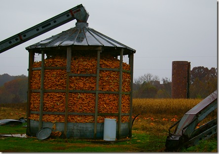 Corn crib, old grain silo and pumpkin patch