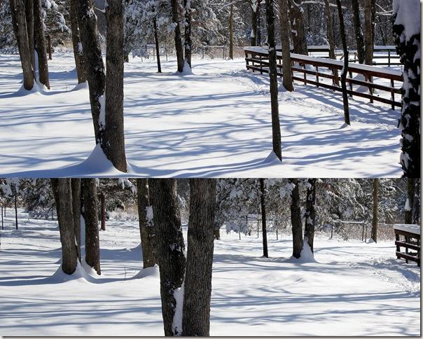 2011-01-20 jan 11 snow4