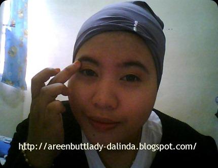 Snapshot_20110122_11