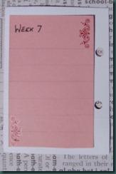 week 7  back