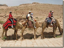 Robishaws on Camels in Petra