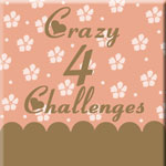 Crazy 4 Challenges